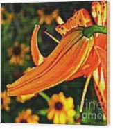 Tiger Lily Bud And Bloom Wood Print