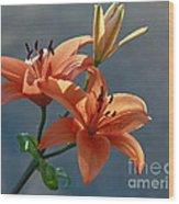 Tiger Lily Splendor Wood Print