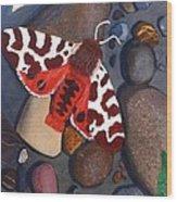 Tiger Moth On River Rocks Wood Print by Amy Reisland-Speer