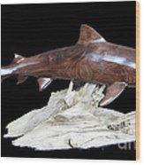 Tiger Shark Wood Print by Kjell Vistnes