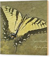 Tiger Swallowtail Butterfly - Papilio Glaucas Wood Print