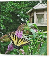 Tiger Swallowtail By The Bird Feeder  Wood Print