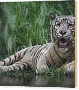 Tiger White Wood Print