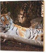 Tigress And Cubs Wood Print