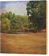 Timbers Pond Wood Print by Jai Johnson