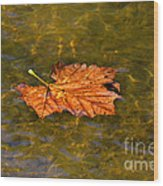 Time Floating Away Wood Print