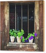 Time Worn Window With Bright Flowers Wood Print