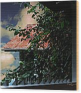 Tin Roof And Vines Wood Print