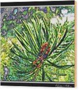 Tiny New Pine Cones Wood Print