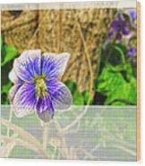 Tiny Violet   Blank Greeting Card Wood Print