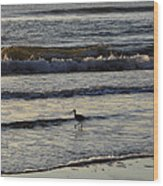 Tip Toeing In The Waves Wood Print