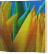 Tiptoe Thru Tulips Wood Print