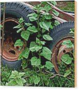 Tires And Ivy Wood Print