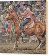 Tj Thompson Jordan Valley 2012 Wood Print