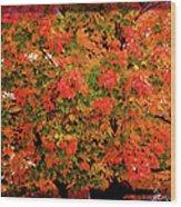 Tn Fall Wood Print