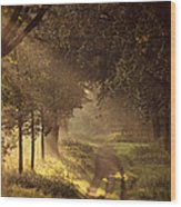 To The Shire Wood Print