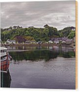 Tobermory Harbor Wood Print