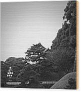 Tokyo Imperial Palace Wood Print by Naxart Studio