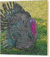 Tom Turkey Pencil Drawing Wood Print
