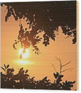 Tomas Point Sunset Wood Print