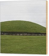 Tomb Group - Knowth - Ireland Wood Print