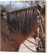 Tombstone Horse Wood Print