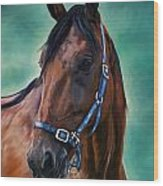 Tommy - Horse Painting Wood Print