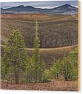 Top Of Cinder Cone Wood Print