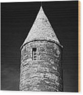 Top Of Irish Round Tower Wood Print