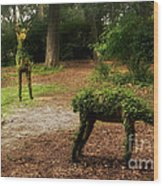 Topiaries Wood Print