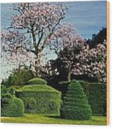 Topiary Garden In Spring Wood Print