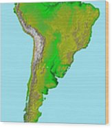 Topographic View Of South America Wood Print