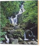 Torc Waterfall, Killarney National Wood Print