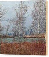 Toronto Skyline 14 Wood Print