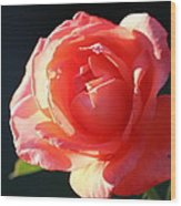 Touch Of Fragrance. Wood Print