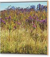 Touch Of Purple In October Wood Print