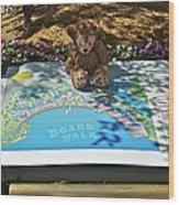 Tourist Bear Wood Print