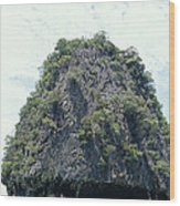 Tourists In Canoes Explore Rainforest Wood Print
