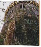 Tower Butron Castle Wood Print