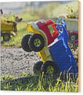 Toy Truck Planters Wood Print by Gordon Wood