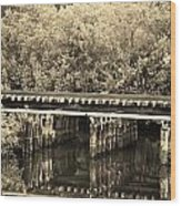 Track On The River In Sepia Wood Print