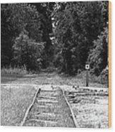 Abandoned Rails Wood Print