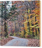 Trail Enlightenment Wood Print