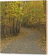 Trail Scene Autumn Abstract 3 Wood Print