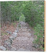 Trail To Peace Wood Print