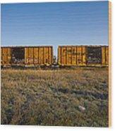Train Cars Wood Print
