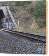 Train Tunnel At The Muir Trestle In Martinez California . 7d10228 Wood Print by Wingsdomain Art and Photography