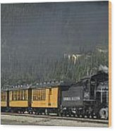 Trainload Of Tourists Wood Print