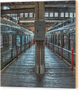 Trains - Two Rail Cars In Roundhouse Wood Print