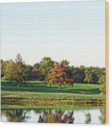 Tranquil Reflections Wood Print
